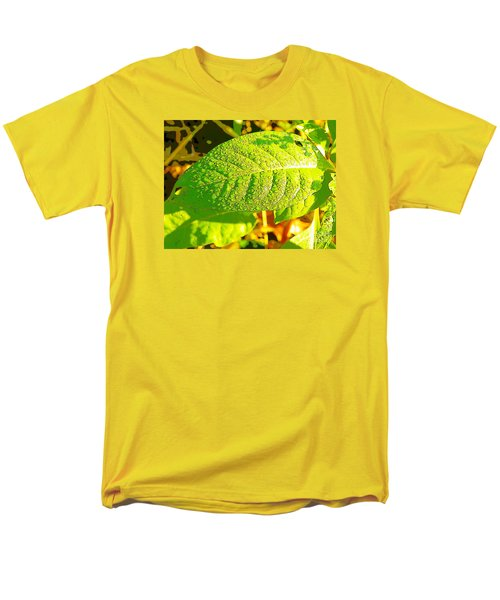 Rain On Leaf Men's T-Shirt  (Regular Fit) by Craig Walters