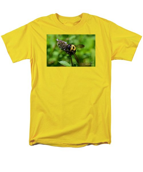 Spot, My Bumblebee Men's T-Shirt  (Regular Fit) by Lew Davis