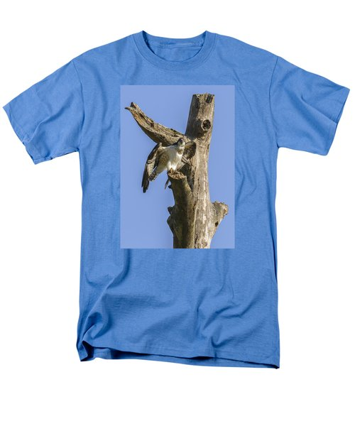 Osprey Pose Men's T-Shirt  (Regular Fit) by David Lester