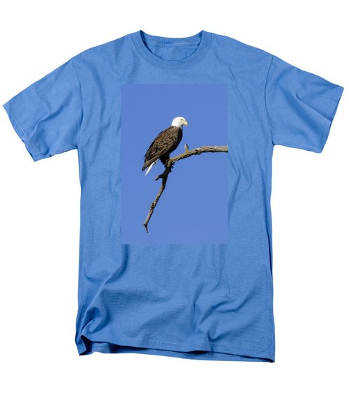 Bald Eagle 4 Men's T-Shirt  (Regular Fit) by David Lester