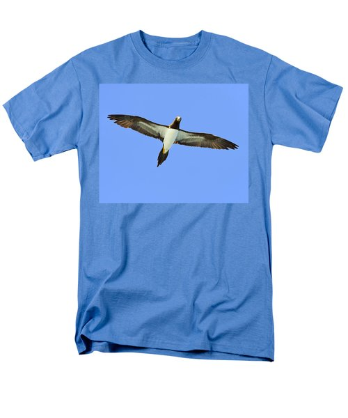 Brown Booby Men's T-Shirt  (Regular Fit) by Tony Beck