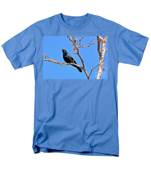 Great-tailed Grackle On A Sunny Spring Day Men's T-Shirt  (Regular Fit) by Susan Wiedmann