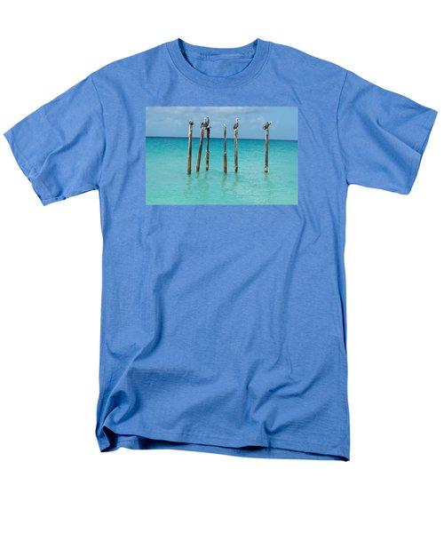 Posted Seagull Men's T-Shirt  (Regular Fit) by David and Lynn Keller