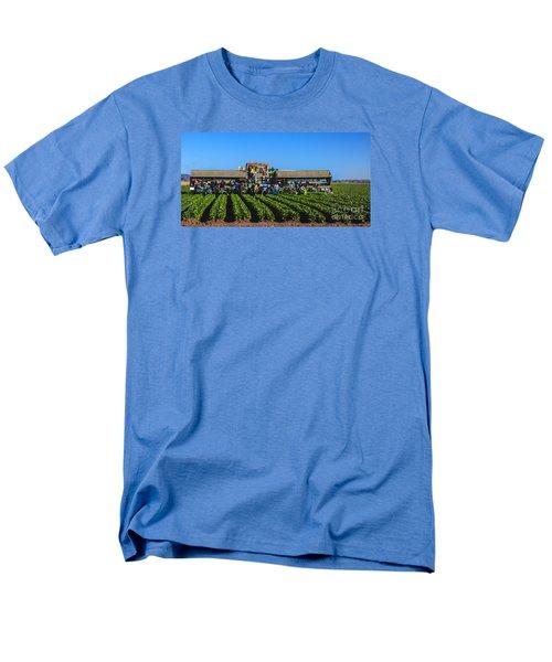 Winter Lettuce Harvest Men's T-Shirt  (Regular Fit) by Robert Bales