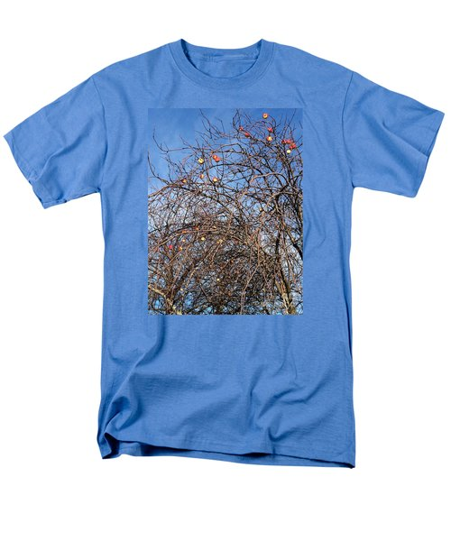 Apples In December Men's T-Shirt  (Regular Fit) by Patricia E Sundik