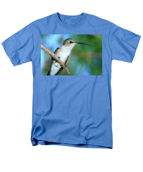 Hummingbird I Men's T-Shirt  (Regular Fit) by Paul Marto