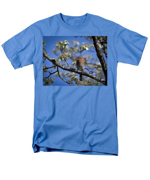 Nest Building Men's T-Shirt  (Regular Fit) by Douglas Stucky