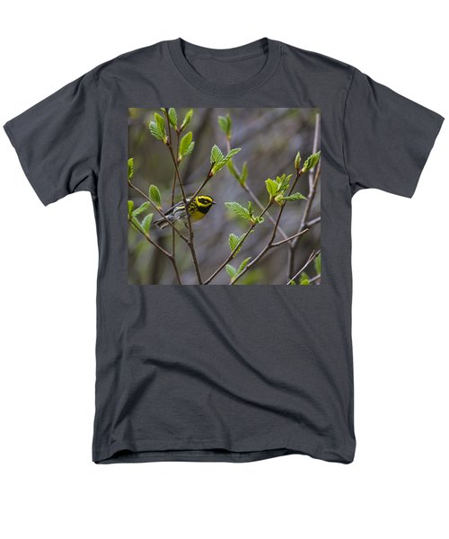Townsends Warbler Men's T-Shirt  (Regular Fit) by Doug Lloyd