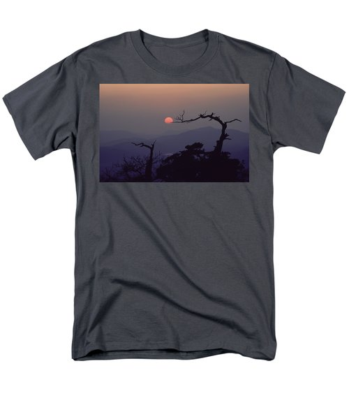 Tree And Sun From Mt Scott Men's T-Shirt  (Regular Fit)