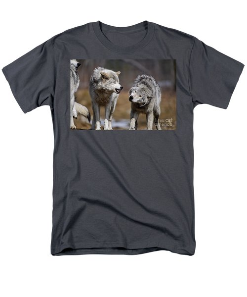 Men's T-Shirt  (Regular Fit) featuring the photograph Alpha Displeasure by Wolves Only