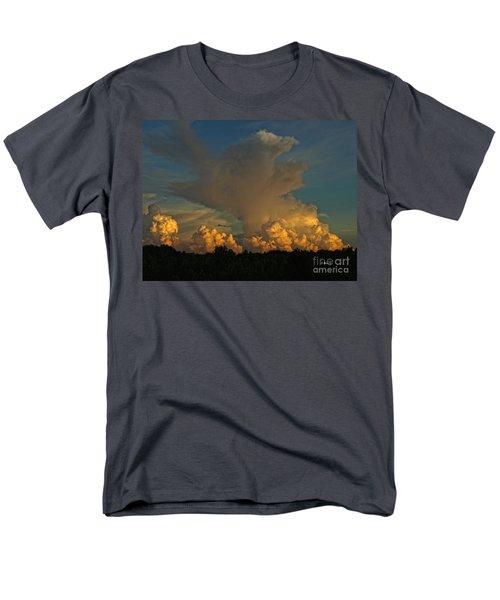 Athena Men's T-Shirt  (Regular Fit) by Shari Nees