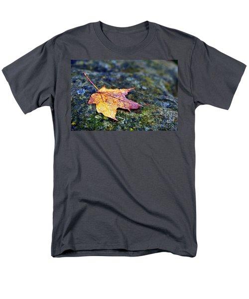 Autumn Leaf On Rocky Ledge Men's T-Shirt  (Regular Fit) by Terri Gostola