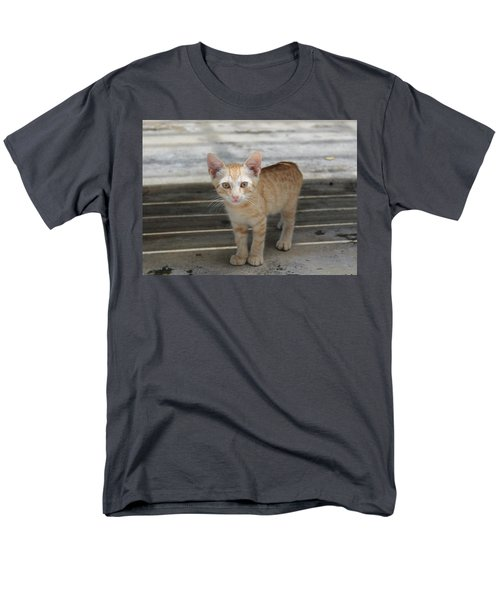 Baby Kitty Men's T-Shirt  (Regular Fit) by Catie Canetti