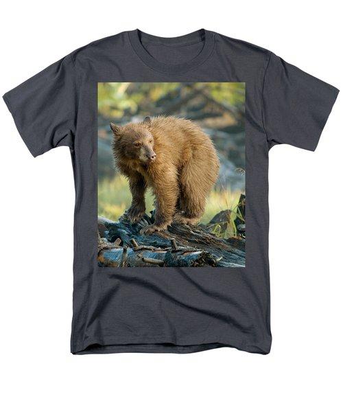 Black Bear Men's T-Shirt  (Regular Fit) by Doug Herr