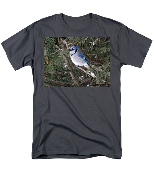 Men's T-Shirt  (Regular Fit) featuring the photograph Blue Jay In The Cedars by Brenda Brown