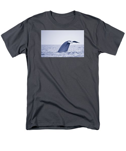 Men's T-Shirt  (Regular Fit) featuring the photograph Blue Whale Tail Fluke With Remoras by Liz Leyden