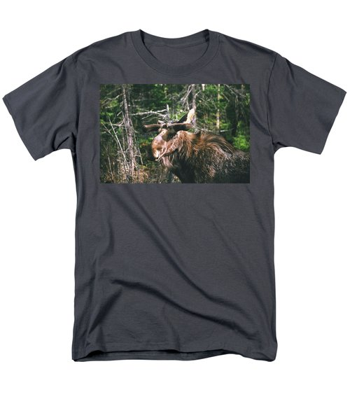 Bull Moose In Spring Men's T-Shirt  (Regular Fit) by David Porteus