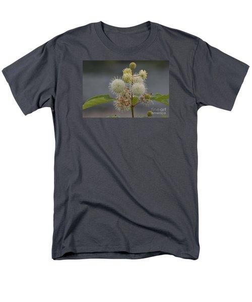 Buttonbush Men's T-Shirt  (Regular Fit) by Randy Bodkins