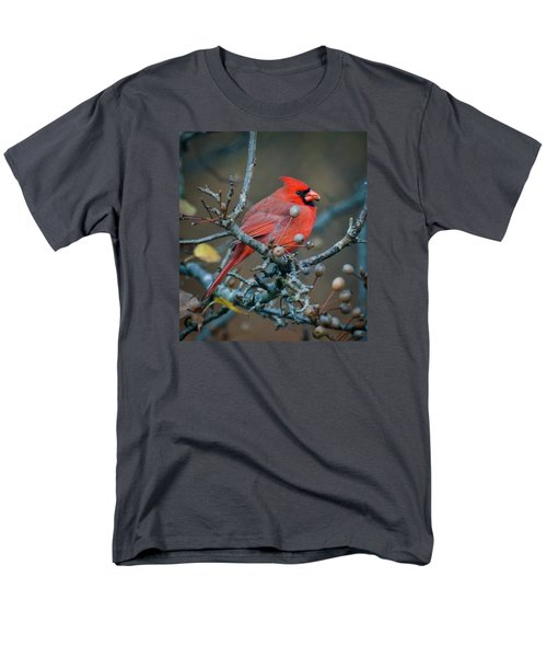 Men's T-Shirt  (Regular Fit) featuring the photograph Cardinal In The Berries by Kerri Farley