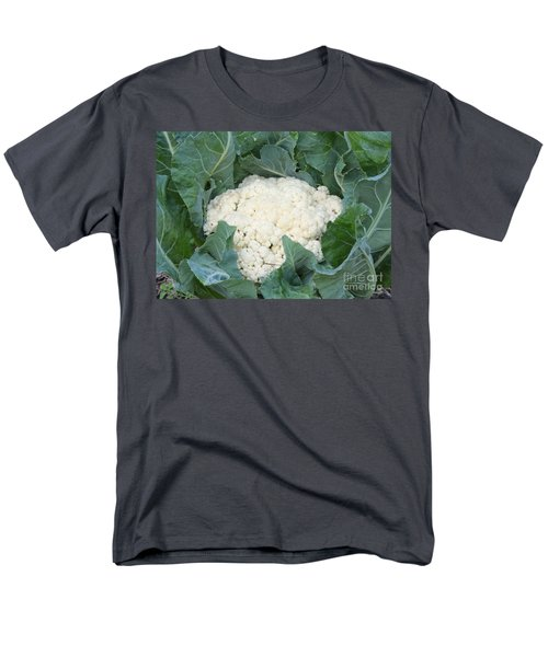 Cauliflower Men's T-Shirt  (Regular Fit) by Carol Groenen