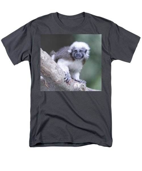 Men's T-Shirt  (Regular Fit) featuring the photograph Cotton Top Tamarin  by Shoal Hollingsworth