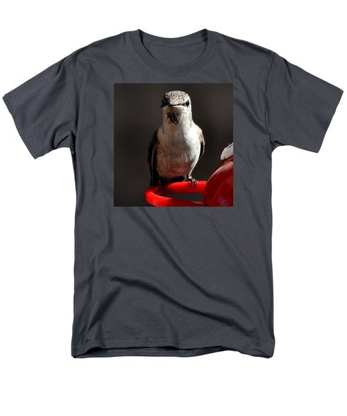 Men's T-Shirt  (Regular Fit) featuring the photograph Female Anna Hummingbird by Jay Milo