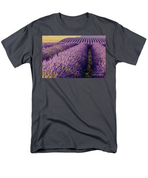 Fields Of Lavender Men's T-Shirt  (Regular Fit) by Brian Jannsen