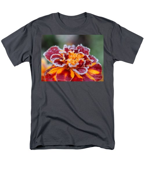 French Marigold Named Durango Red Outlined With Frost Men's T-Shirt  (Regular Fit) by J McCombie