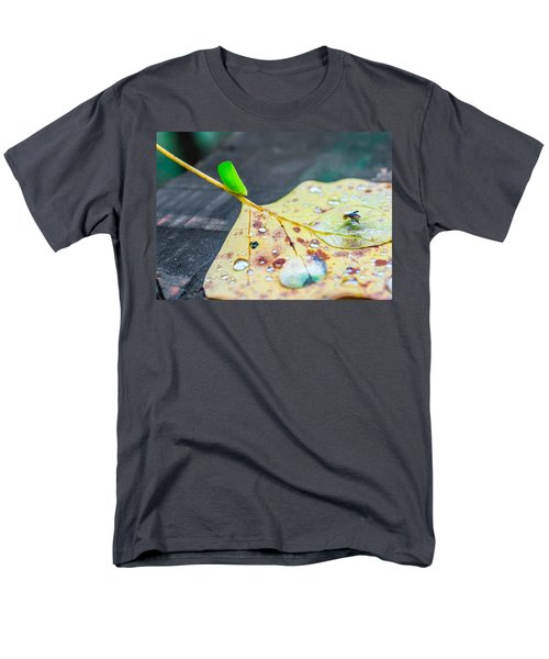 Men's T-Shirt  (Regular Fit) featuring the photograph Fulgoroidea On A Leaf by Rob Sellers