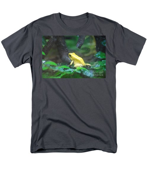 Golden Poison Frog Men's T-Shirt  (Regular Fit) by DejaVu Designs