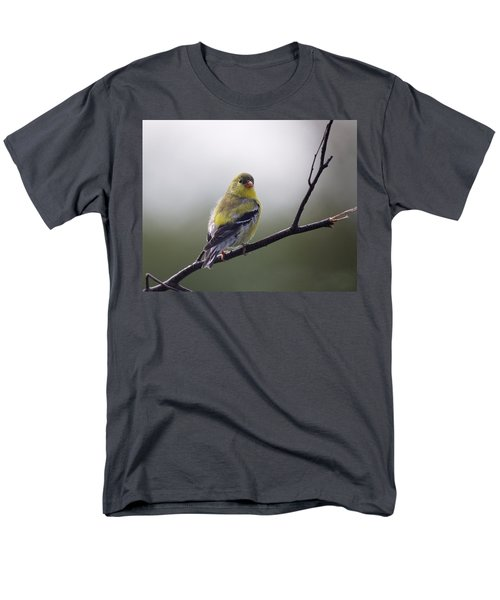 Men's T-Shirt  (Regular Fit) featuring the photograph Goldfinch Molting To Breeding Colors by Susan Capuano