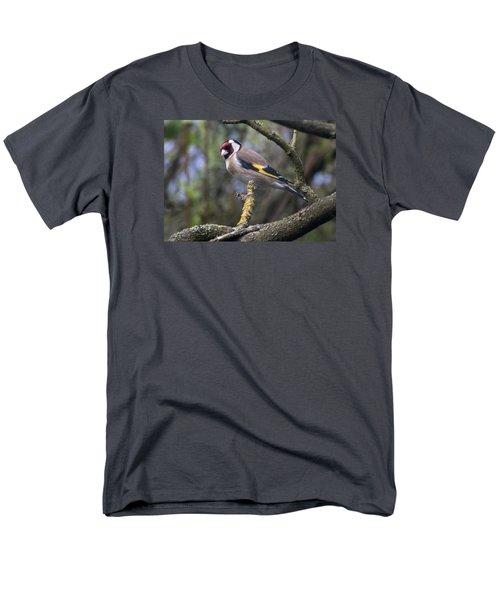 Goldfinch Men's T-Shirt  (Regular Fit) by Richard Thomas