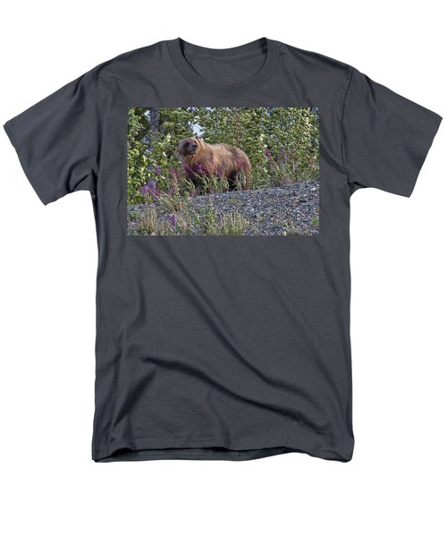 Grizzly Men's T-Shirt  (Regular Fit) by David Gleeson