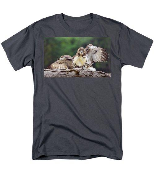 Hawkeyes Men's T-Shirt  (Regular Fit)