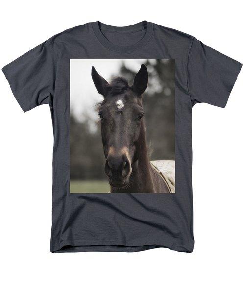 Horse With Gentle Eyes Men's T-Shirt  (Regular Fit) by Belinda Greb