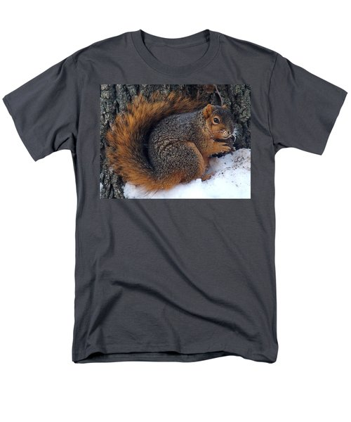 Indiana Squirrel In Winter With Nut Men's T-Shirt  (Regular Fit) by Steve Archbold