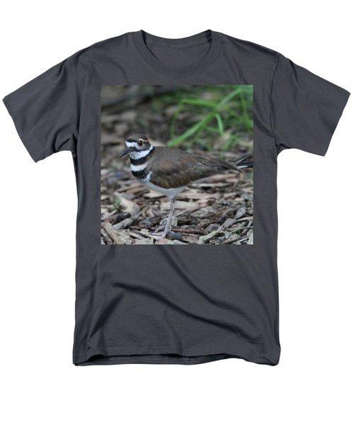 Killdeer Men's T-Shirt  (Regular Fit) by Dan Sproul