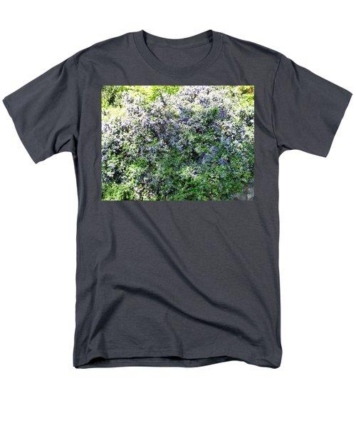 Lincoln Park In Bloom Men's T-Shirt  (Regular Fit) by David Trotter