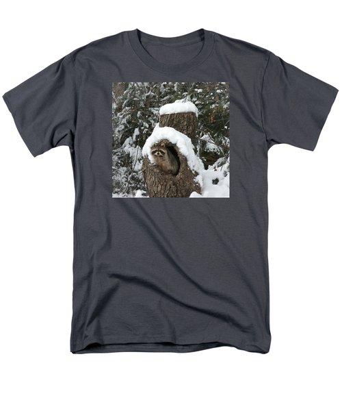 Mr. Raccoon Men's T-Shirt  (Regular Fit)