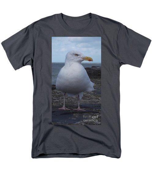 New Quay Gull  Men's T-Shirt  (Regular Fit) by John Williams
