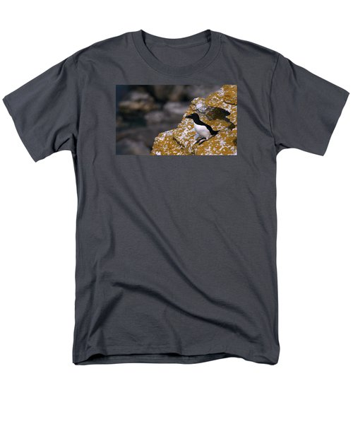 Razorbill Bird Men's T-Shirt  (Regular Fit) by Dreamland Media