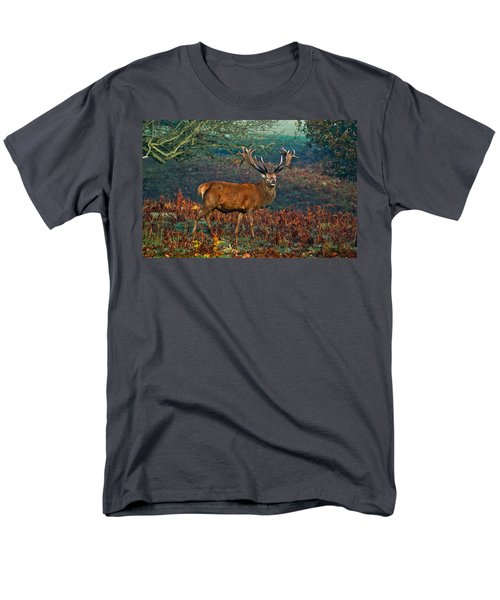 Red Deer Stag In Woodland Men's T-Shirt  (Regular Fit) by Scott Carruthers