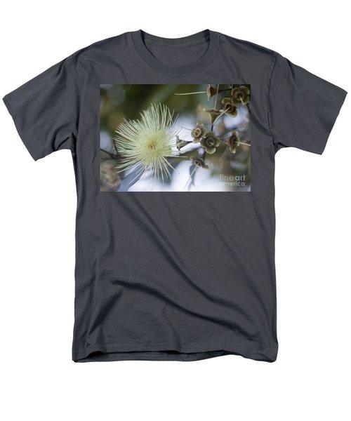 Rose Apple Blossom Men's T-Shirt  (Regular Fit)
