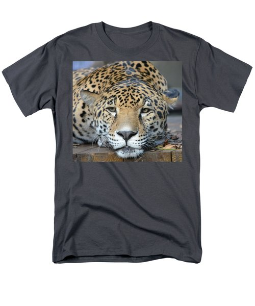 Sleepy Jaguar Men's T-Shirt  (Regular Fit) by Richard Bryce and Family