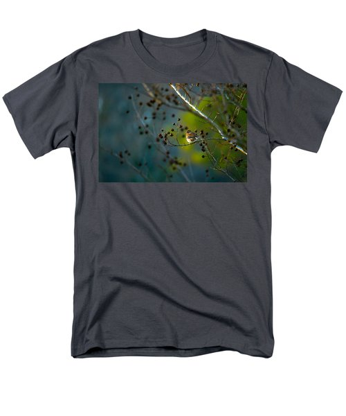 Sparrow In The Warm Light Men's T-Shirt  (Regular Fit) by Shelby  Young