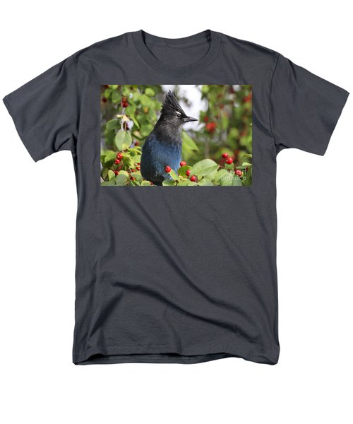 Steller's Jay And Red Berries Men's T-Shirt  (Regular Fit)