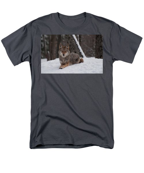 Men's T-Shirt  (Regular Fit) featuring the photograph Striking The Pose by Bianca Nadeau