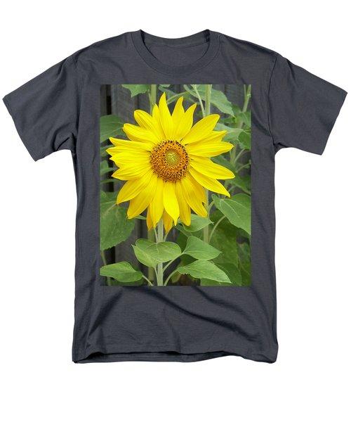 Sunflower Men's T-Shirt  (Regular Fit) by Lisa Phillips