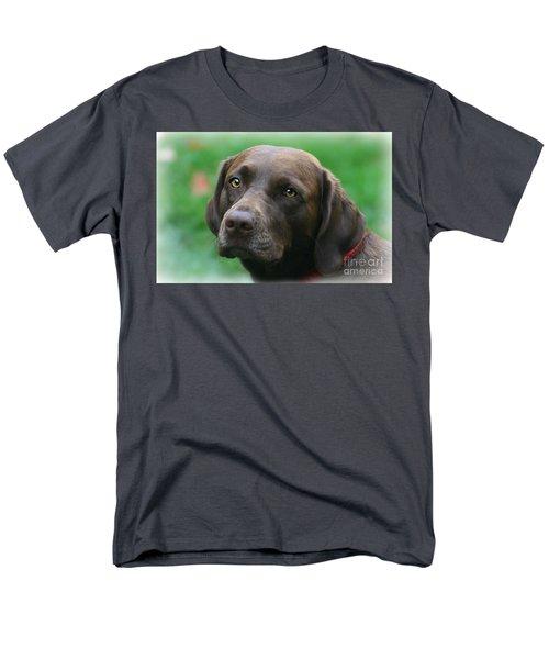The Chocolate Lab Men's T-Shirt  (Regular Fit)