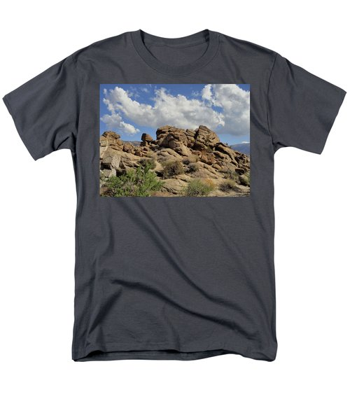 The Rock Garden Men's T-Shirt  (Regular Fit) by Michael Pickett